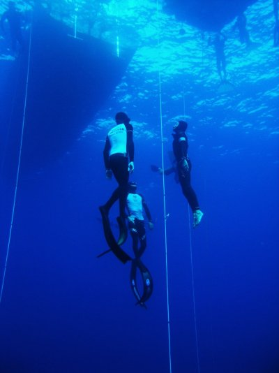 壁纸 海底 海底世界 海洋馆 水族馆 桌面 400_534 竖版 竖屏 手机