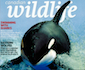 canadian-wildlife-mag